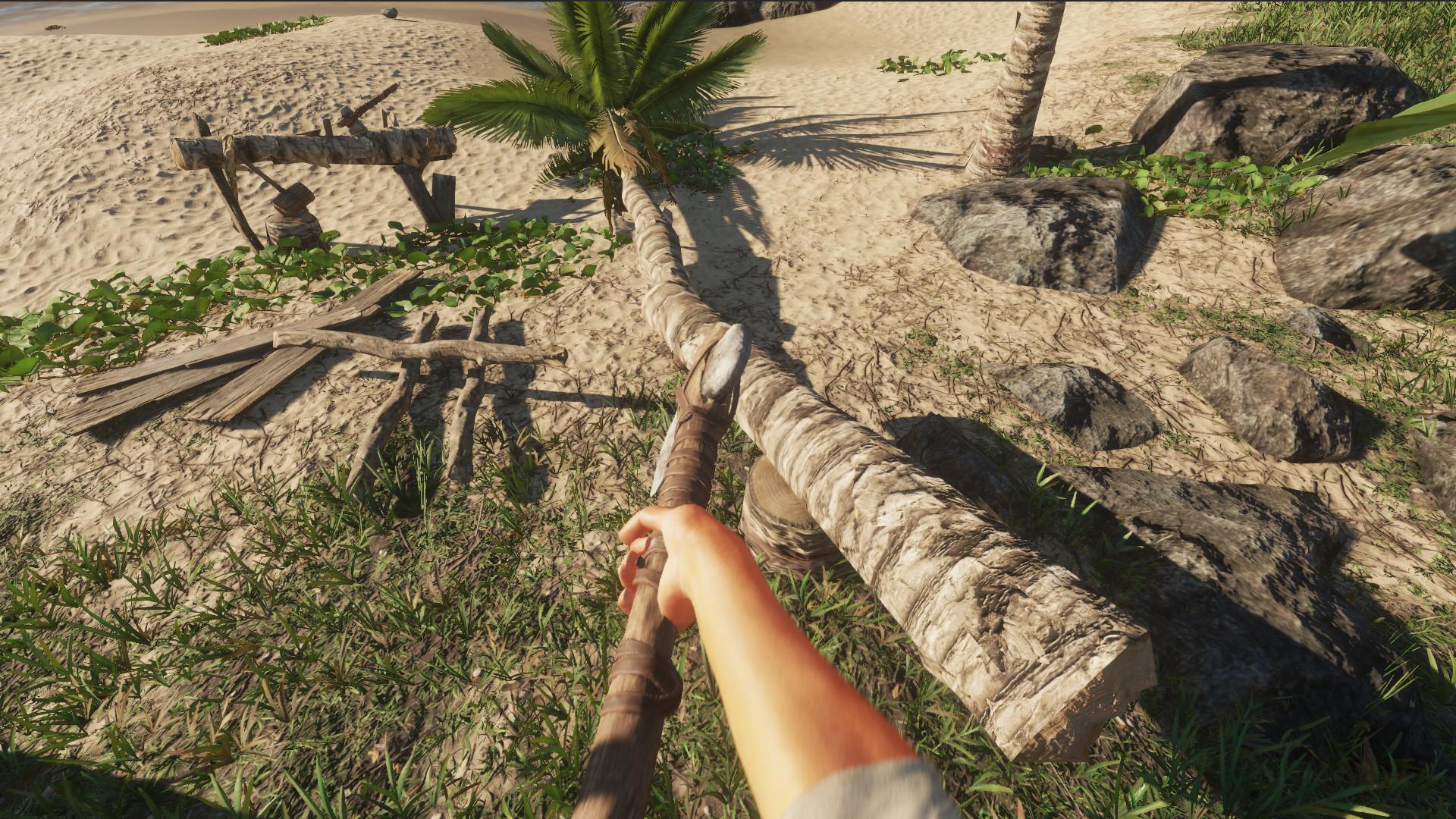 荒岛求生插图2