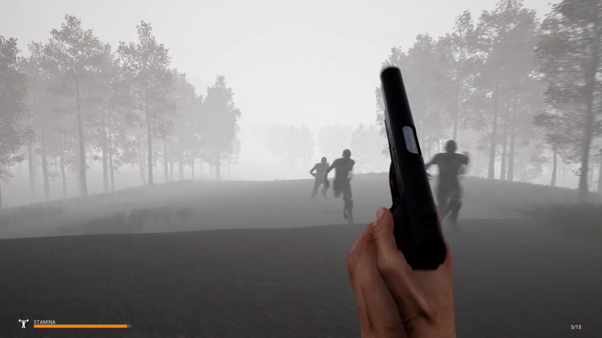 迷雾生存/Mist Survival插图1